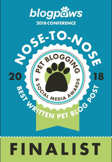 Best Written Pet Blog Post